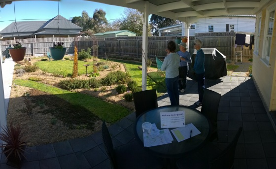 Edible Garden Panorama